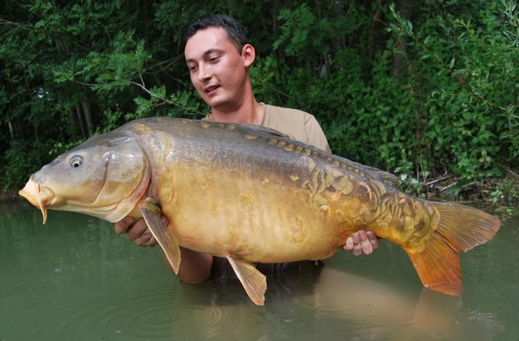 Un poisson,une histoire... Mir20-4179164