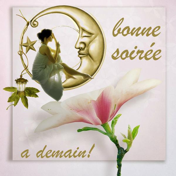 BONNE SOIRÉE DU DIMANCHE 22 DECEMBRE Bn-3ffa215