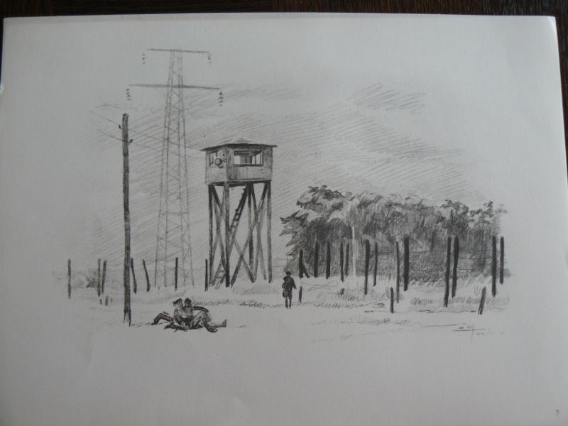 """3 séries de """"dessins de captivité"""" P1090066-42b0a4f"""