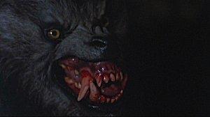 Le loup-garou de Londres Titre original An American Werewolf in London E-et-cie-loup-gar...ondres00-3f28d69
