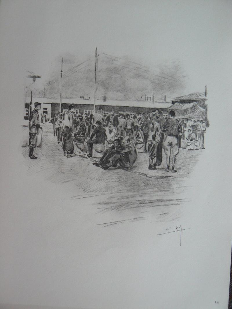 """3 séries de """"dessins de captivité"""" P1090073-42b0ab9"""