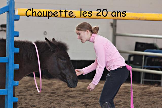 8 ans d'équitation..♥ - Page 7 Img_6877-copie-3e26c39